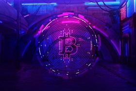 Bitcoin's Explosive Growth Period  The Bitcoin Pizza Day story illu